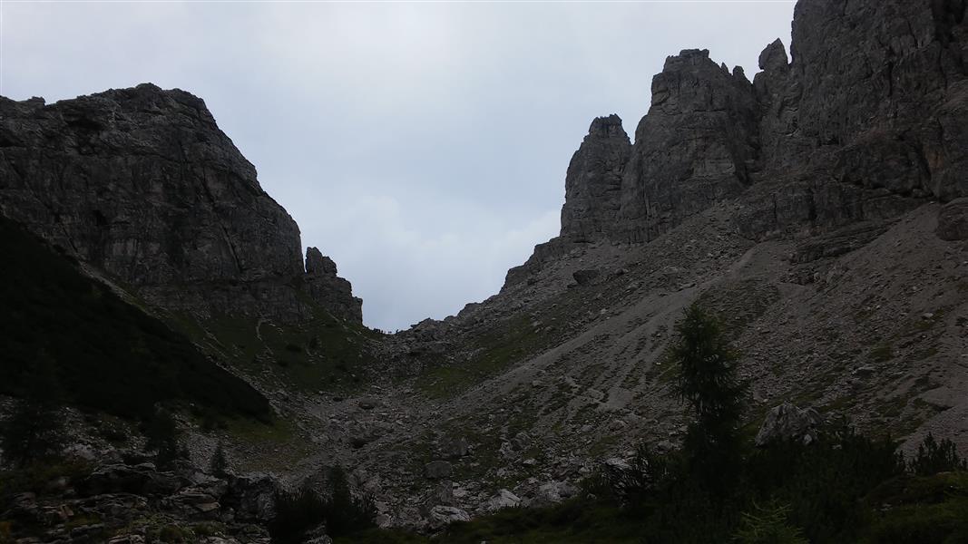 montanaia_58